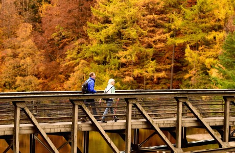 PITLOCHRY, SCOTLAND - OCTOBER 24:  Members of the public cross a bridge at Loch Faskally on October 24, 2014 in Pitlochry, Scotland. Forecasters have predicted the warm temperatures, lots of sunshine and spells of rain experienced during the summer, twinned with recent dry, warm early-autumn days and cooler nights is a promising recipe for a spectacular show of seasonal colour in woods and forests across the UK over the next few weeks.  (Photo by Jeff J Mitchell/Getty Images)